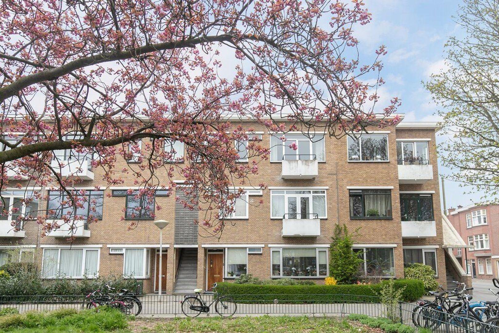 Van Heutszstraat 53, Den Haag foto-30