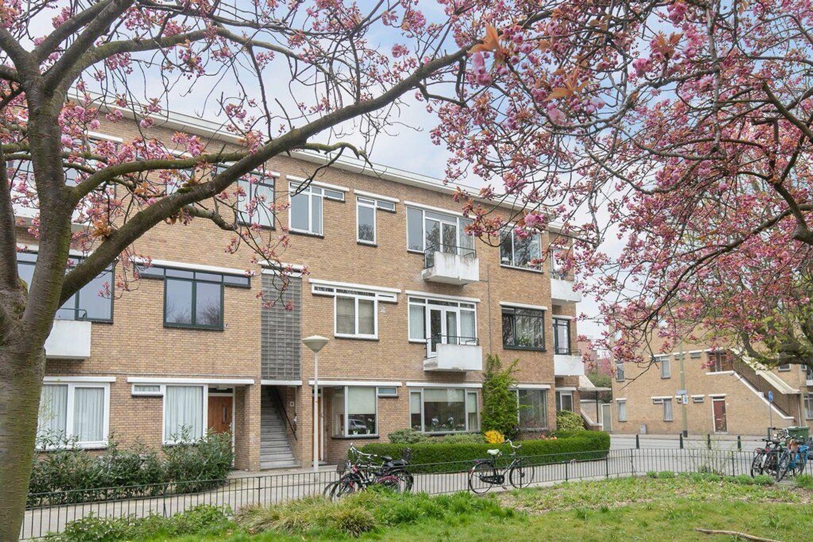 Van Heutszstraat 53, Den Haag foto-2