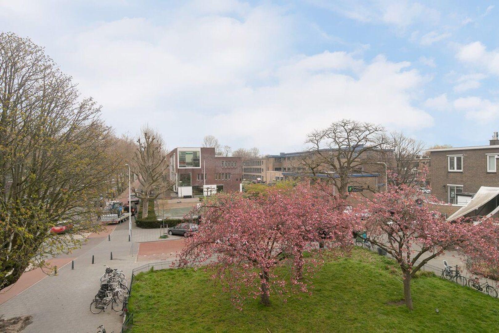 Van Heutszstraat 53, Den Haag foto-29
