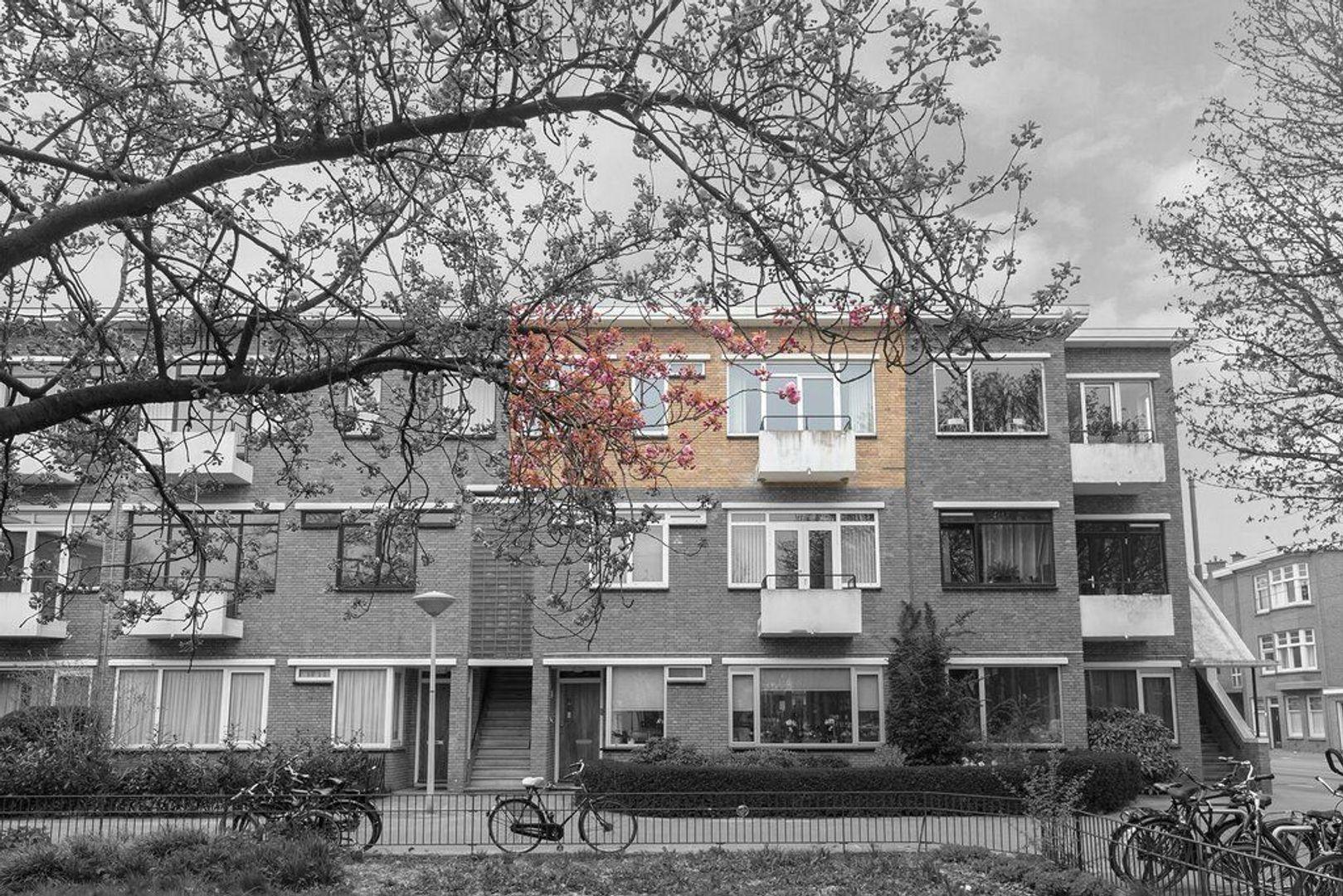 Van Heutszstraat 53, Den Haag foto-31
