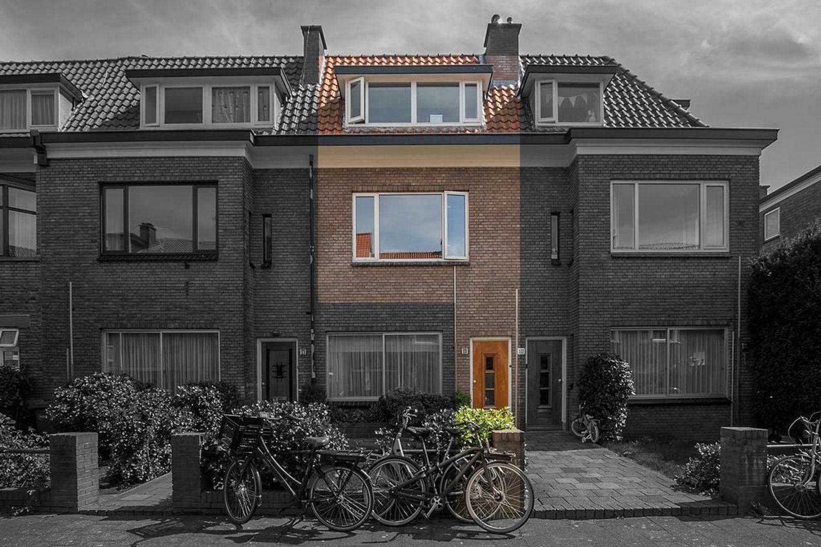 Roelofsstraat 119, Den Haag foto-0