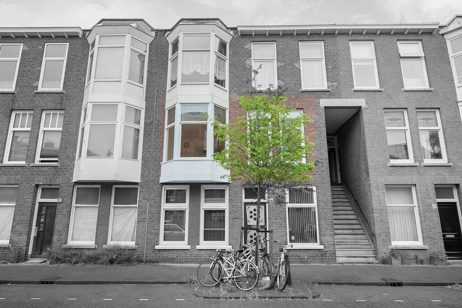 Johannes Camphuijsstraat 290, Den Haag foto-21