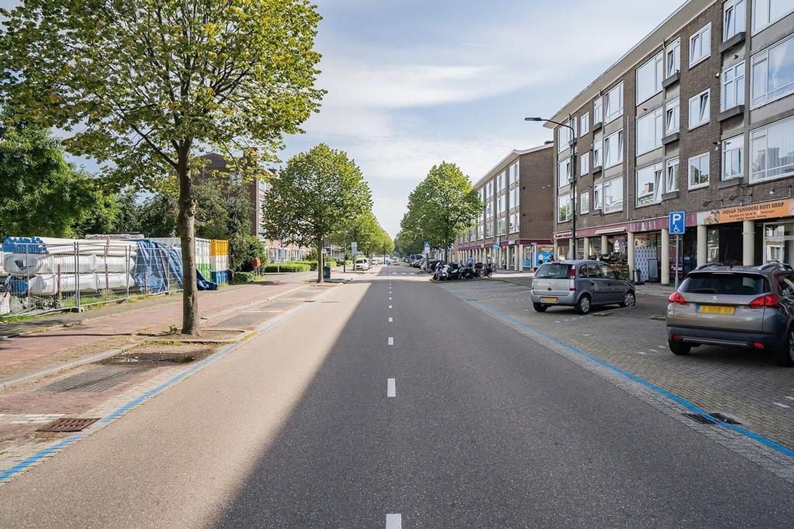 Baesjoustraat 4, Voorburg foto-21