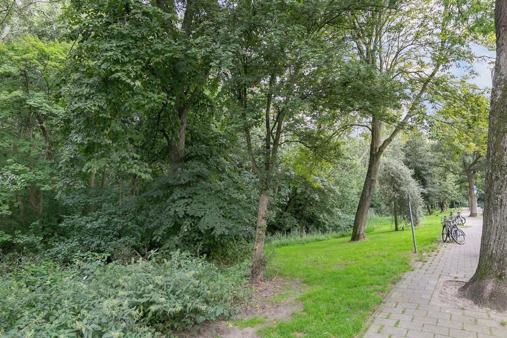Jan van Beersstraat 103, Den Haag foto-25