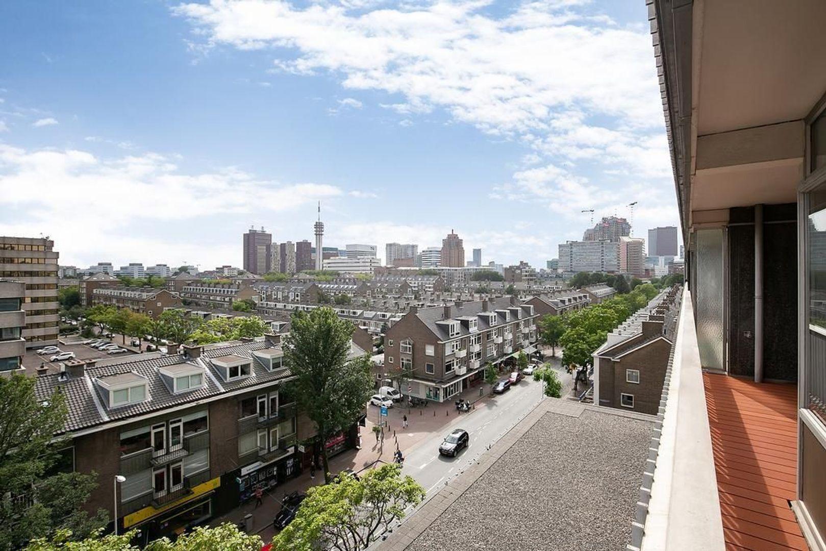 Laan van Nieuw-Oost-Indie 47, Den Haag foto-19