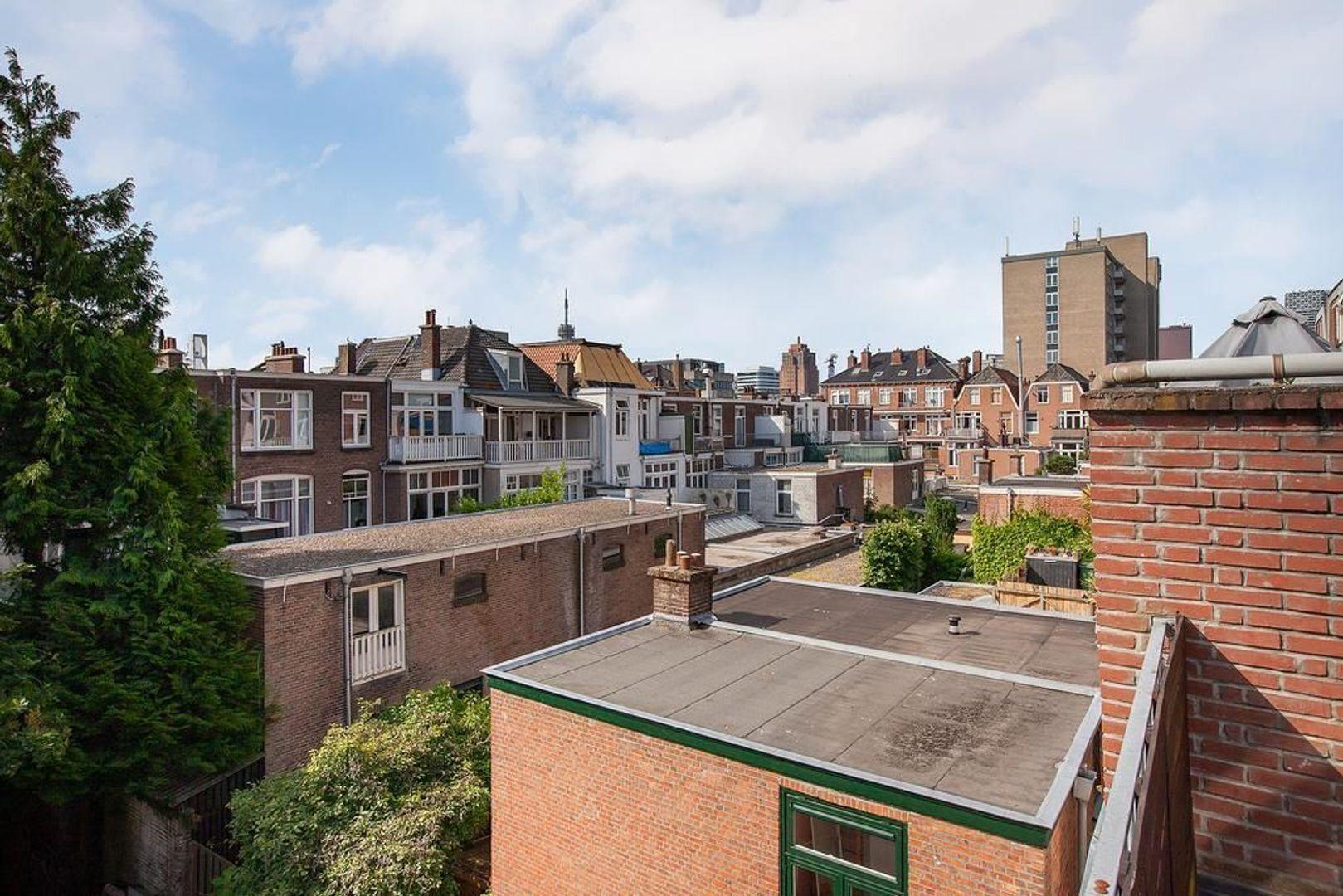 Rijklof van Goensstraat 47, Den Haag foto-33