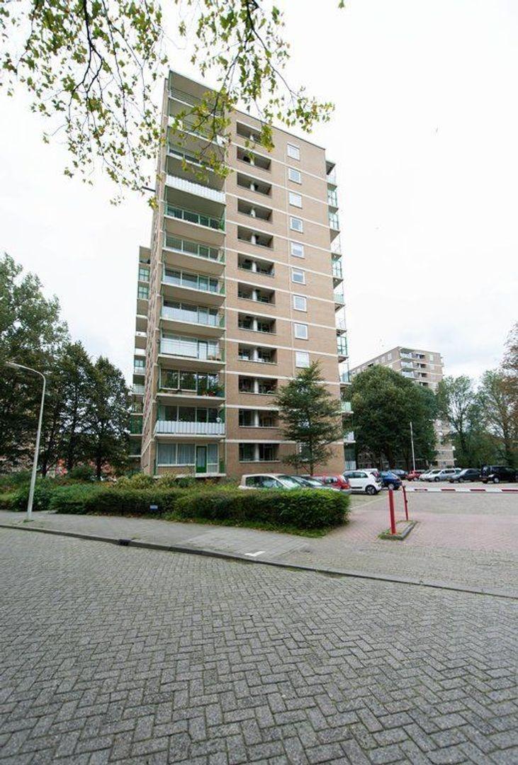 Vlamenburg 81, Den Haag foto-26