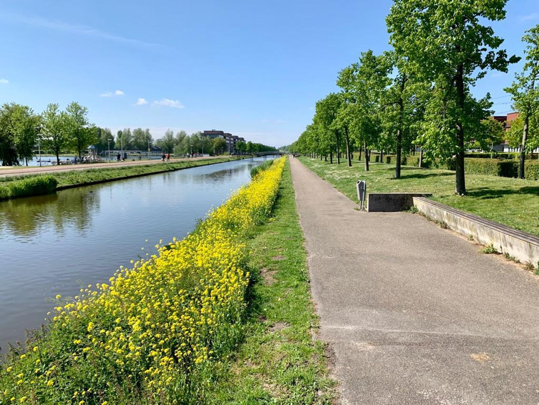 Weidevogellaan 312, Den Haag foto-16