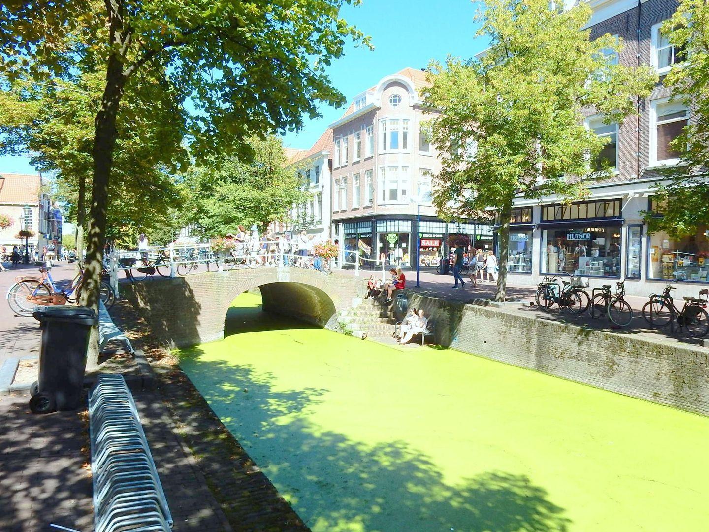 Hippolytusbuurt 45, Delft foto-15