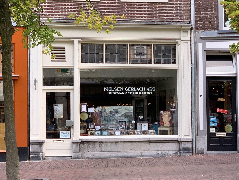 Hippolytusbuurt 45, Delft foto-0
