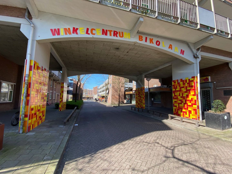 Bikolaan 193, Delft foto-20