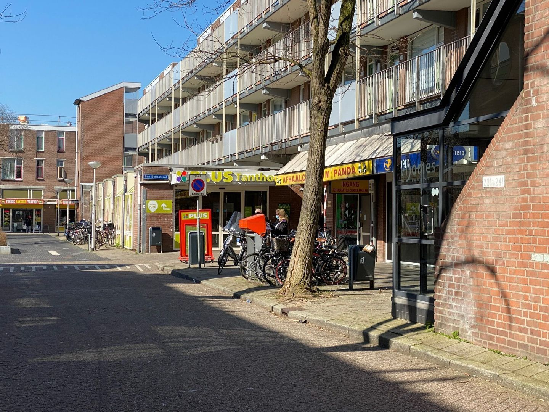 Bikolaan 193, Delft foto-23