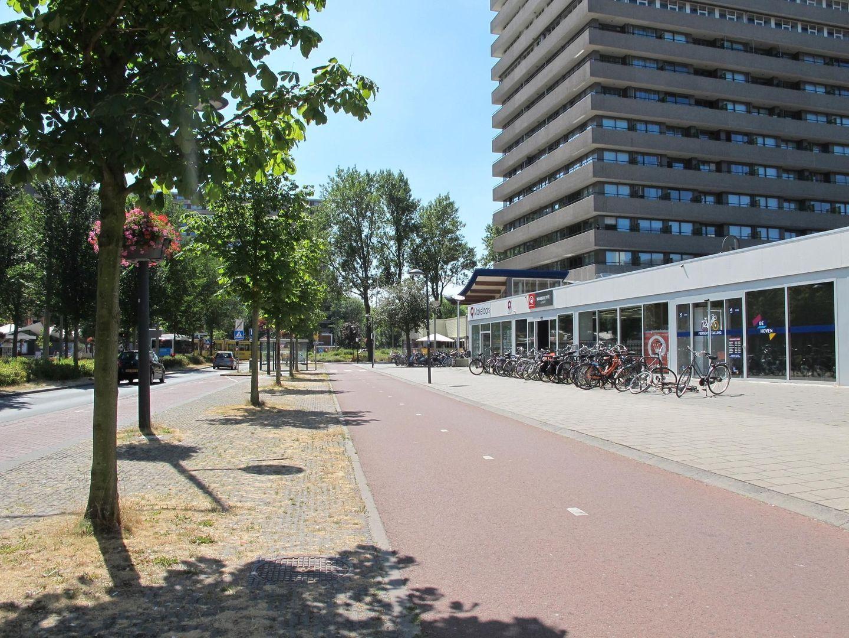 Papsouwselaan 474 B, Delft foto-2