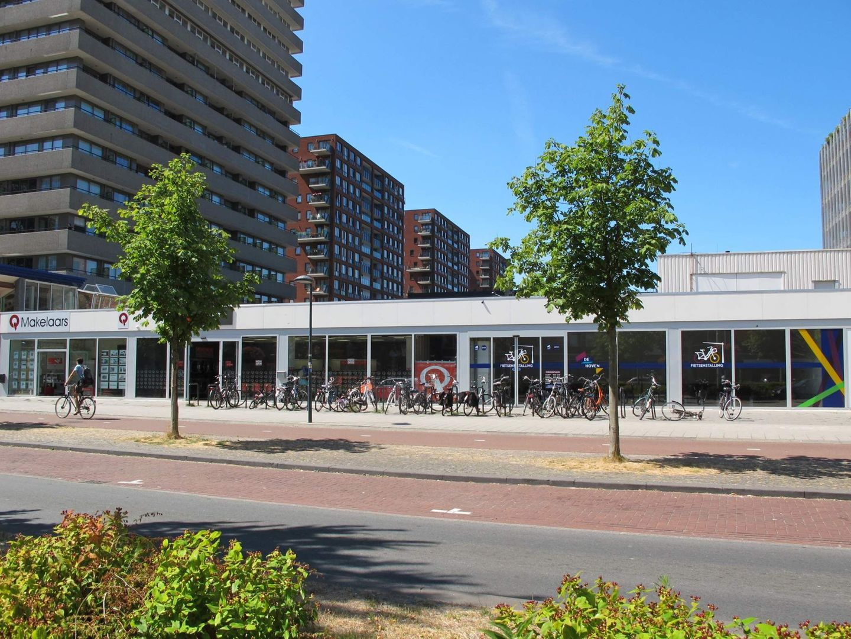 Papsouwselaan 474 B, Delft foto-3