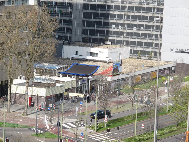 Papsouwselaan 474 B, Delft foto-11