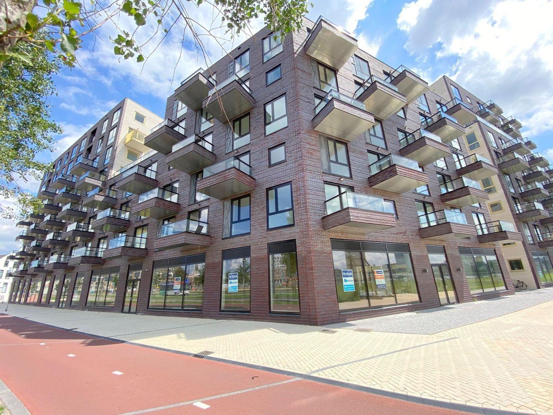 Irene boulevard ong, Delft foto-12