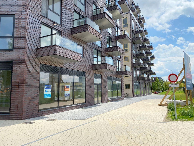 Irene boulevard ong, Delft foto-13
