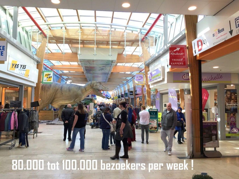 Troelstralaan 47 49, Delft foto-10