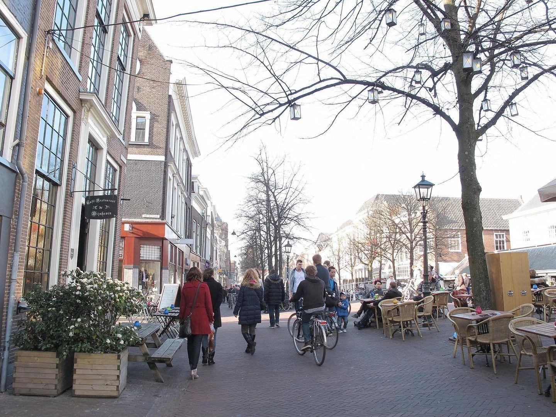 Hippolytusbuurt 37, Delft foto-19