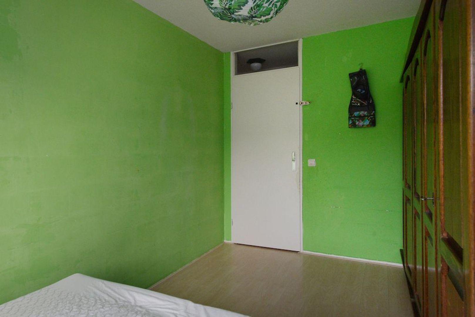 Amazoneweg 30, Delft foto-24