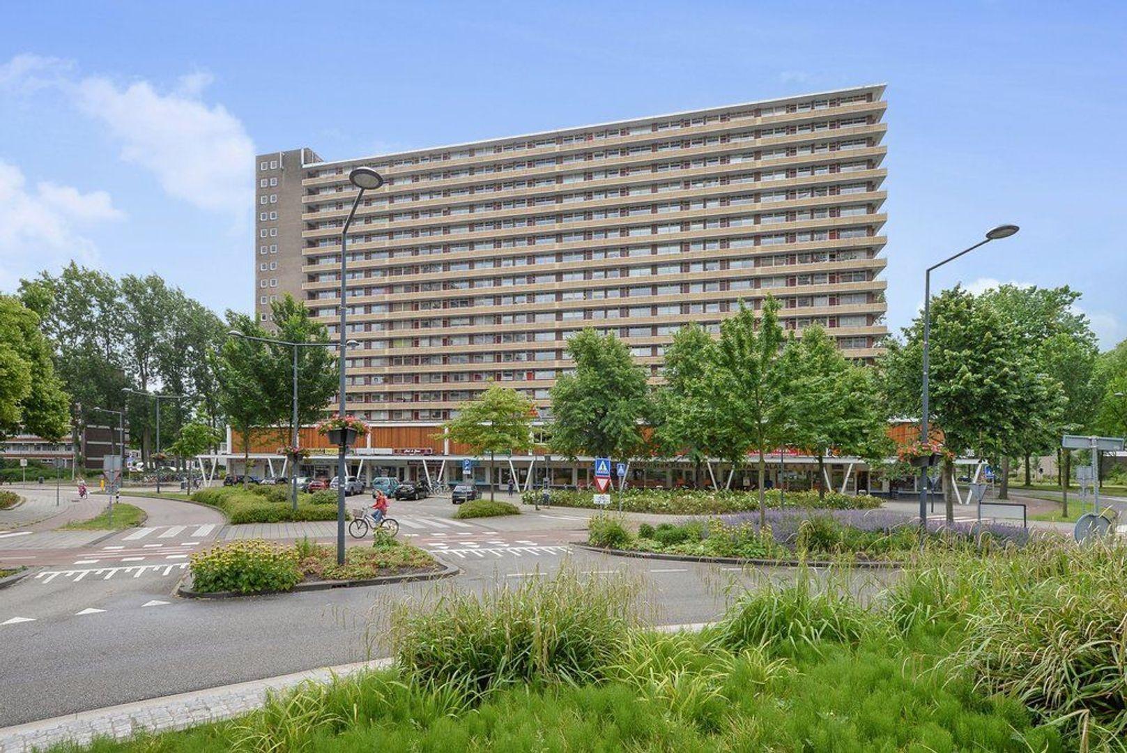 Hendrik Tollensstraat 348, Delft foto-0