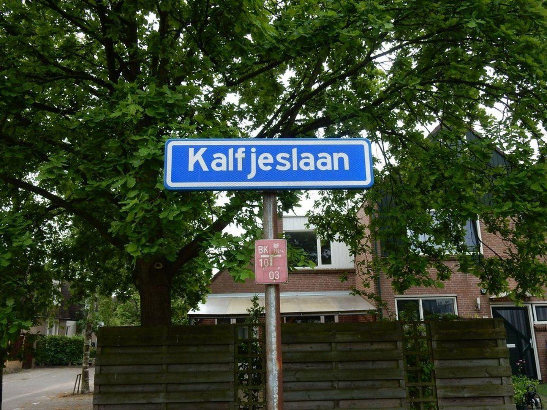 Kalfjeslaan 14 B, Delft foto-34