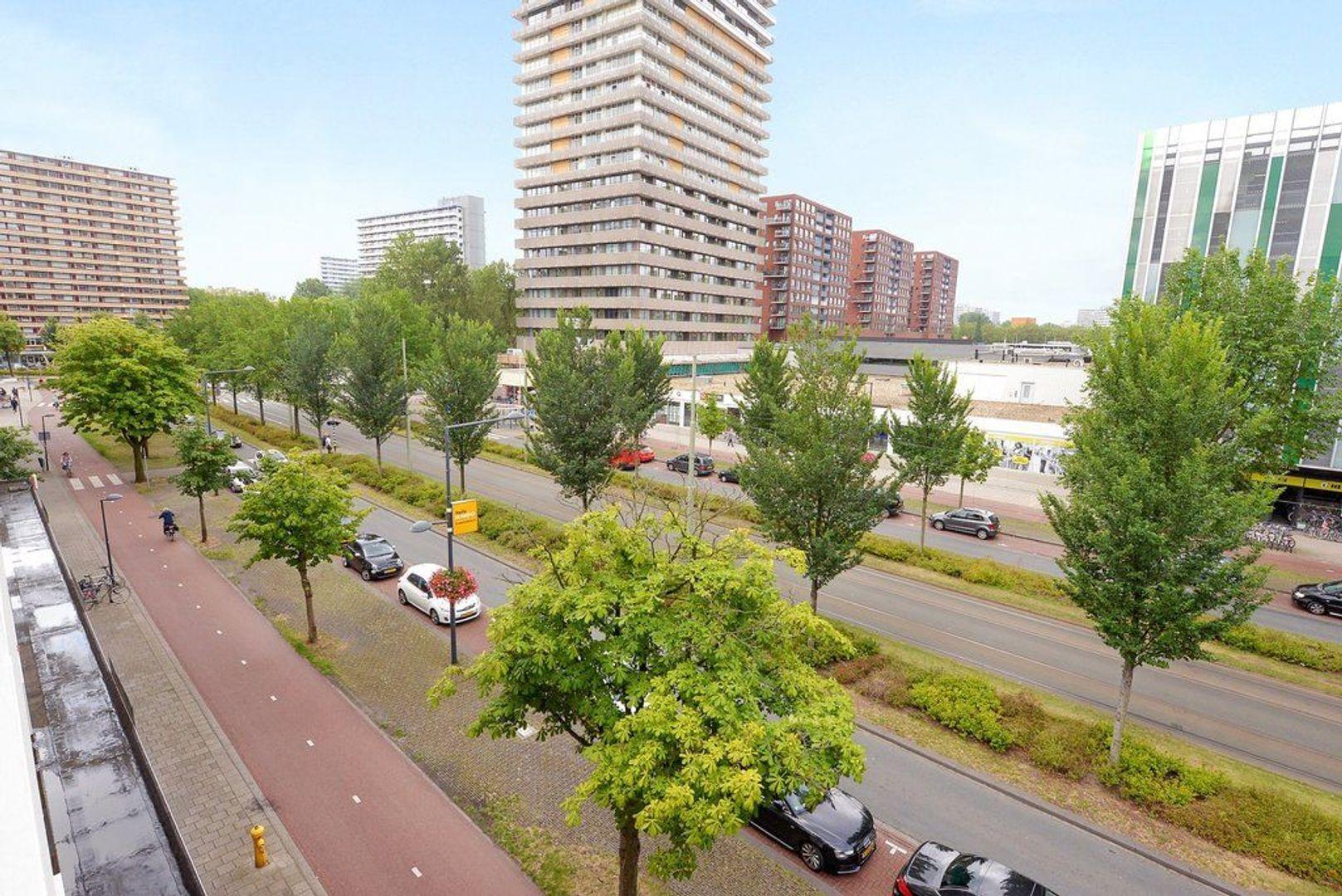 Papsouwselaan 255, Delft foto-34