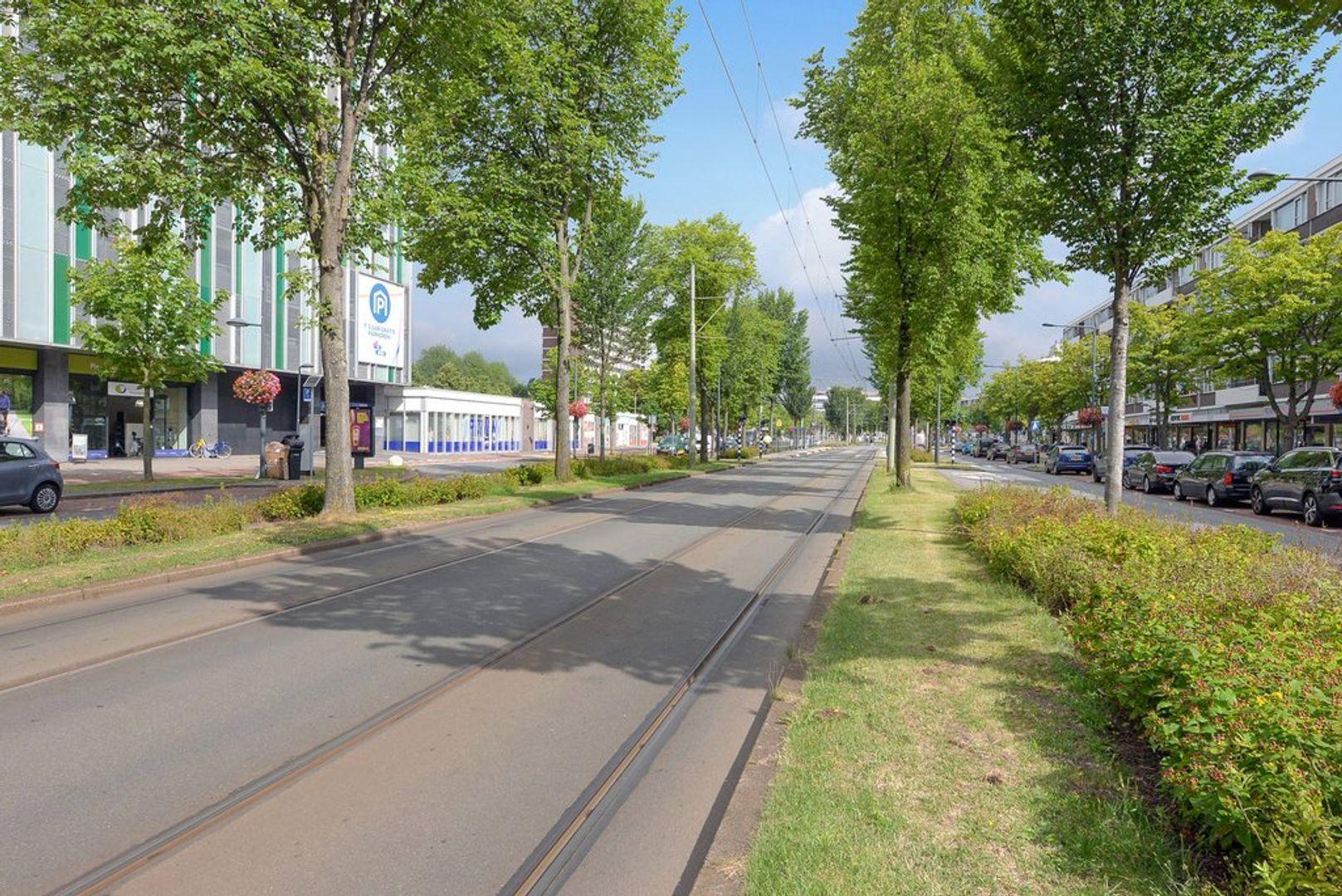 Papsouwselaan 255, Delft foto-37