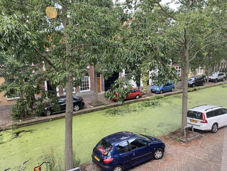 Molslaan 121 A, Delft foto-9