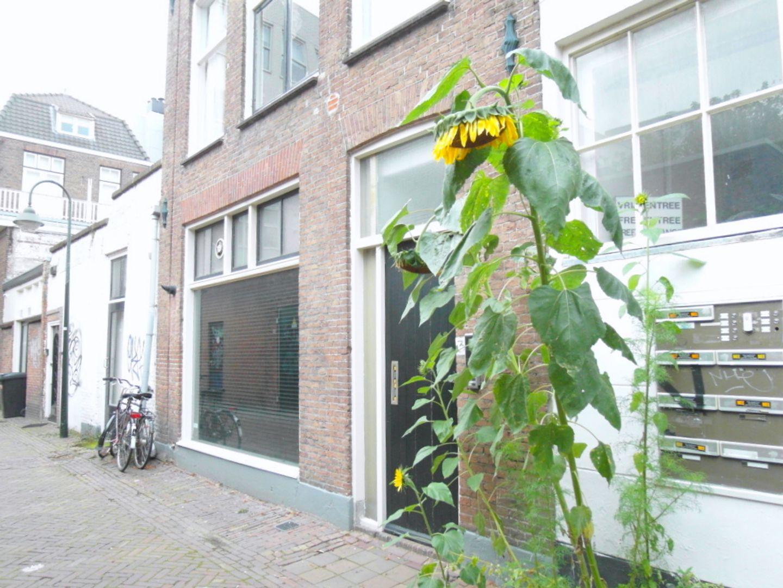 Smitsteeg 3 XIII, Delft foto-12