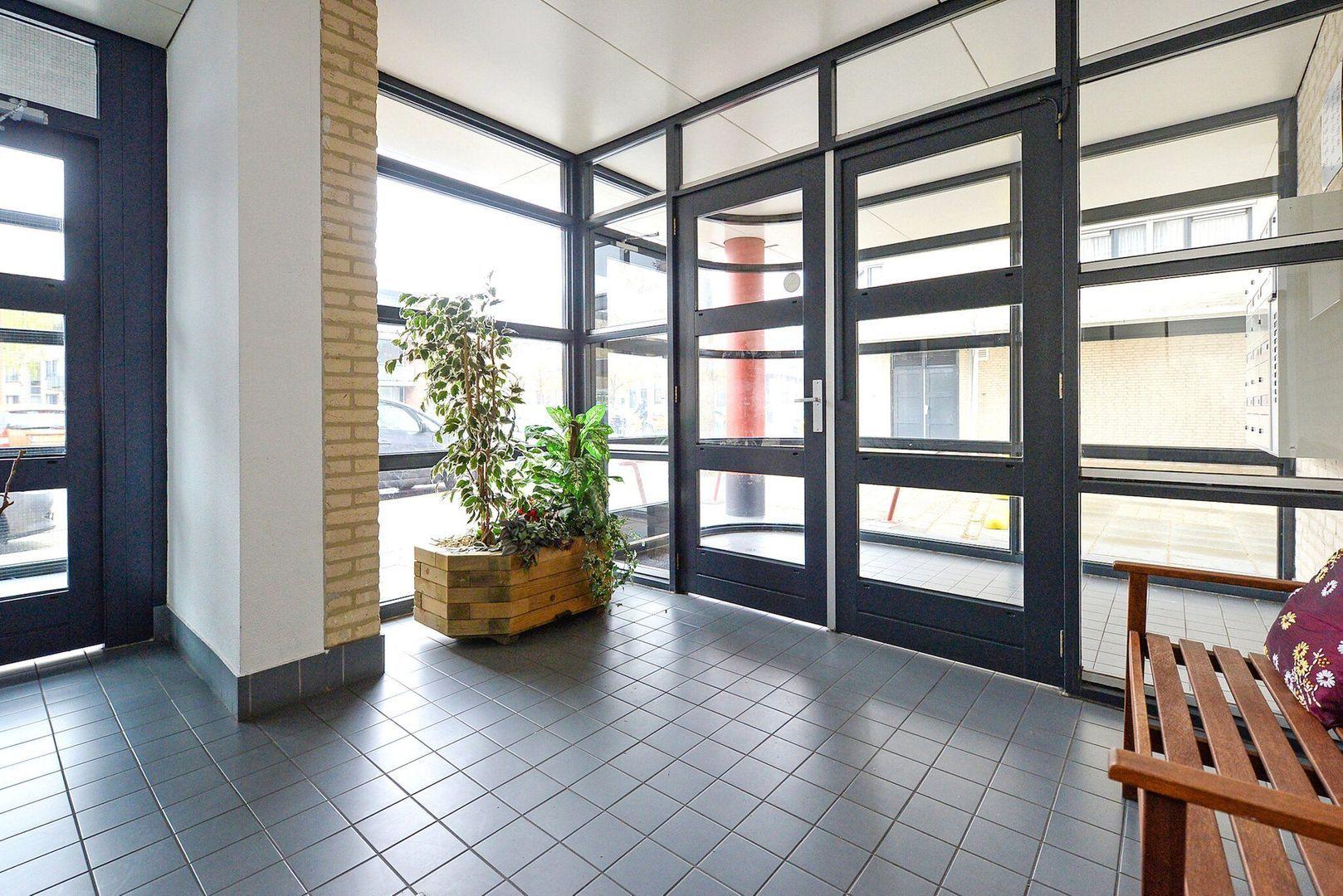 Parkzoom 171, Delft foto-13