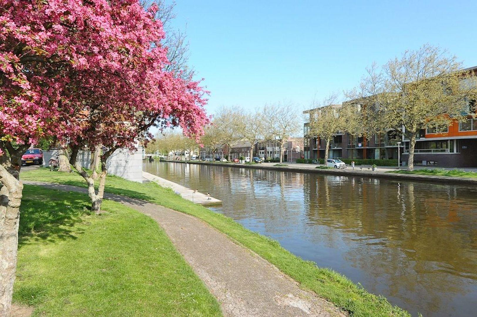 Raam 86, Delft foto-18