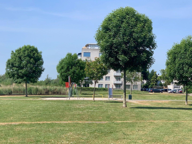 Straat van Ormoes 6, Delft foto-6