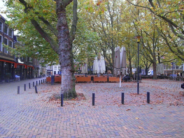 Beestenmarkt 40, Delft foto-15