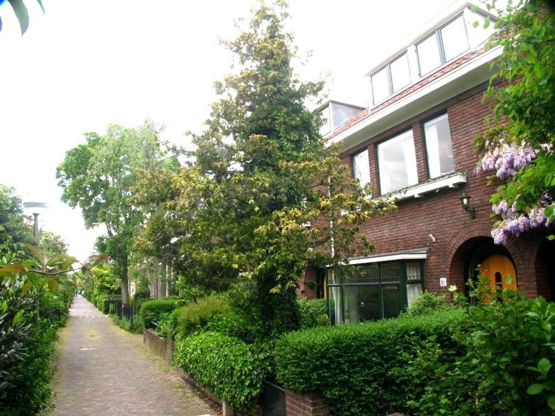 Laan van Overvest 16, Delft foto-56