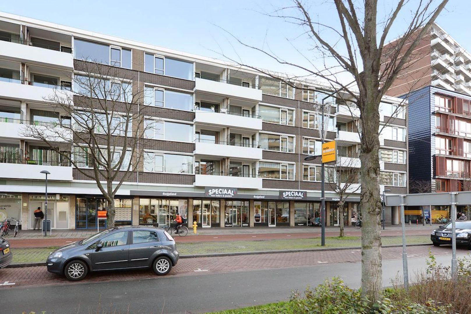 Papsouwselaan 273, Delft foto-0