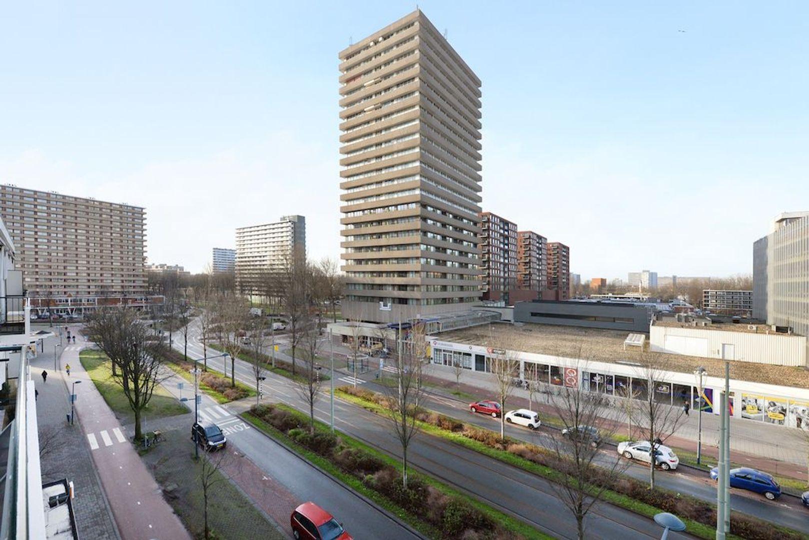Papsouwselaan 273, Delft foto-18