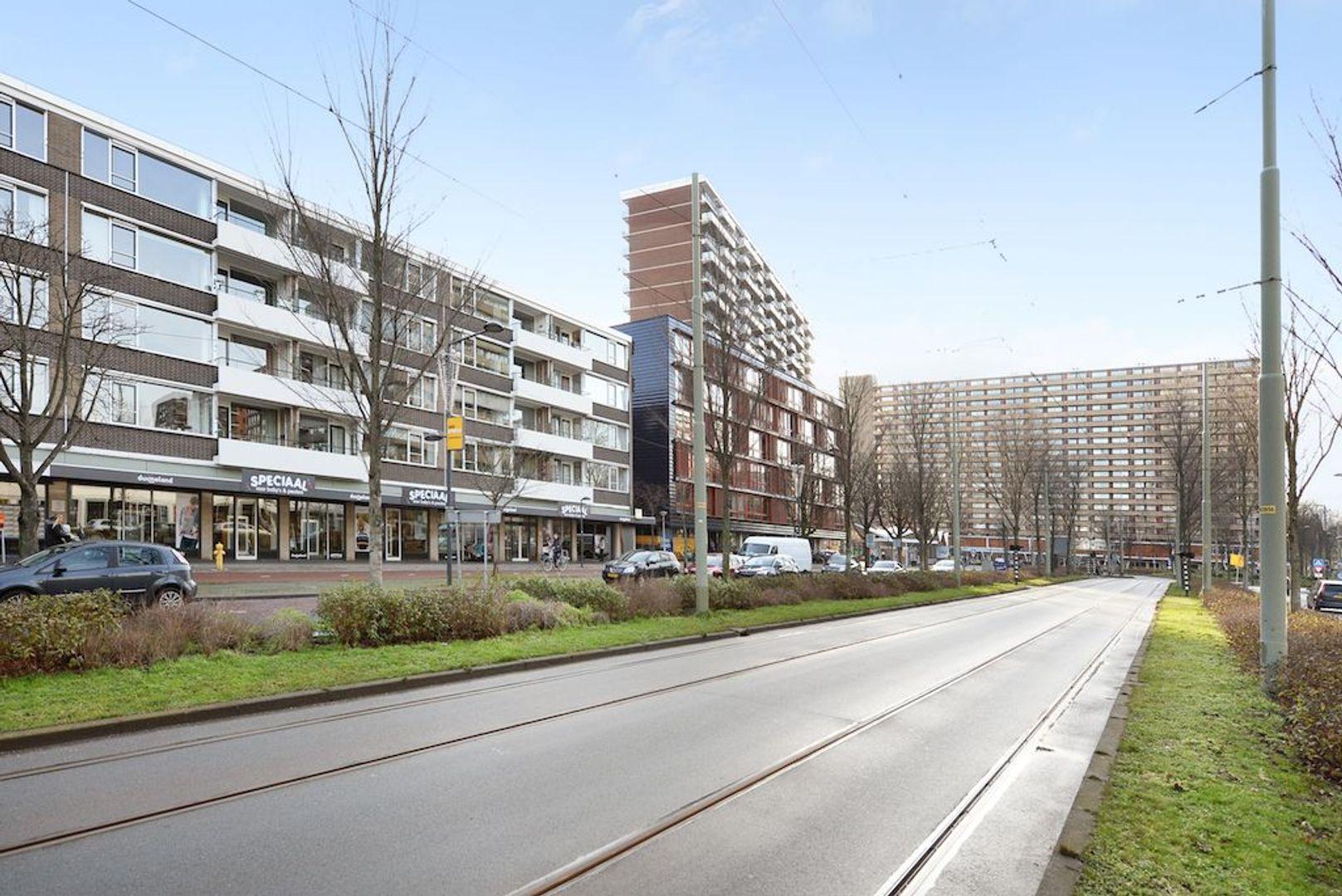 Papsouwselaan 273, Delft foto-34