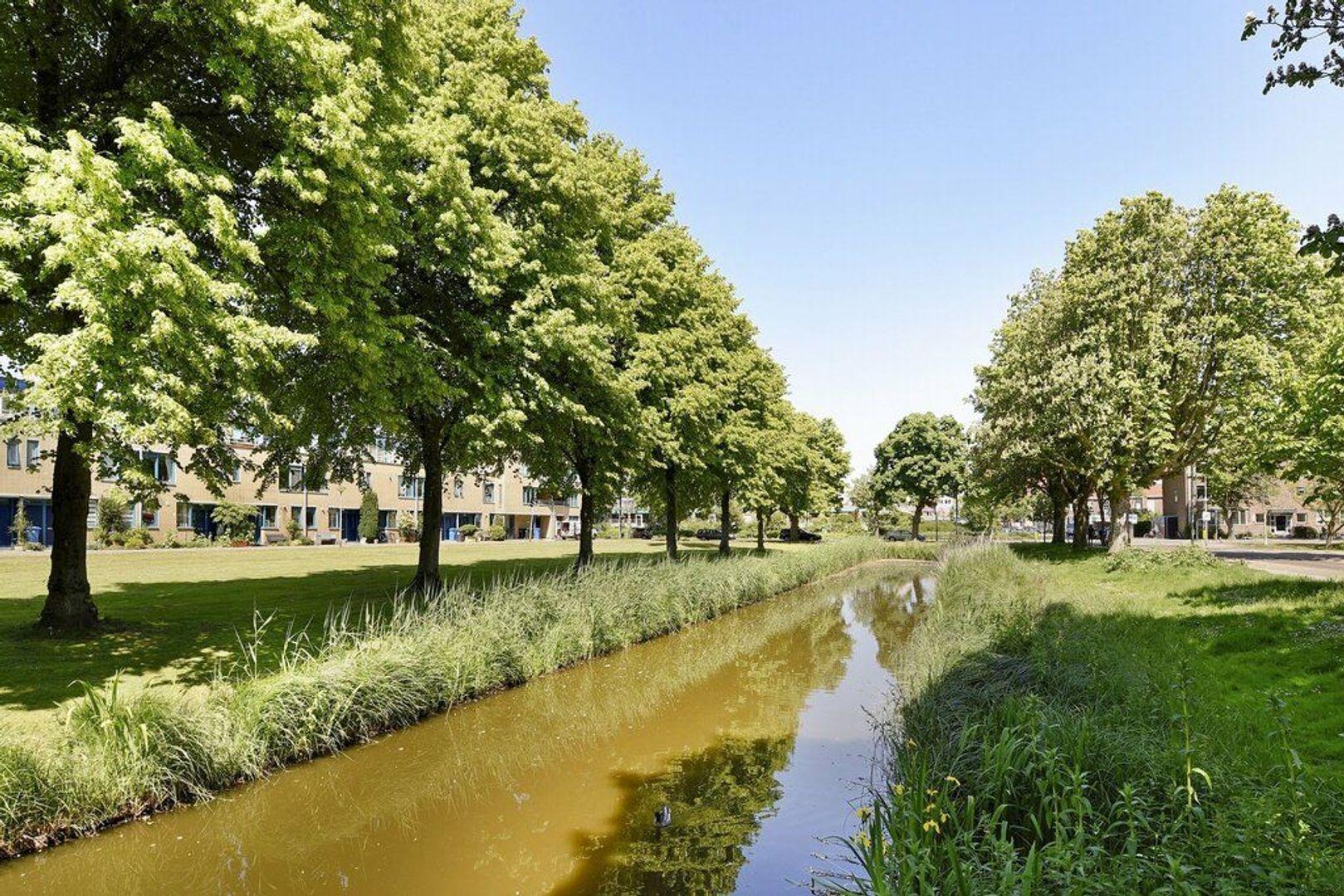 Letland 12, Delft foto-30