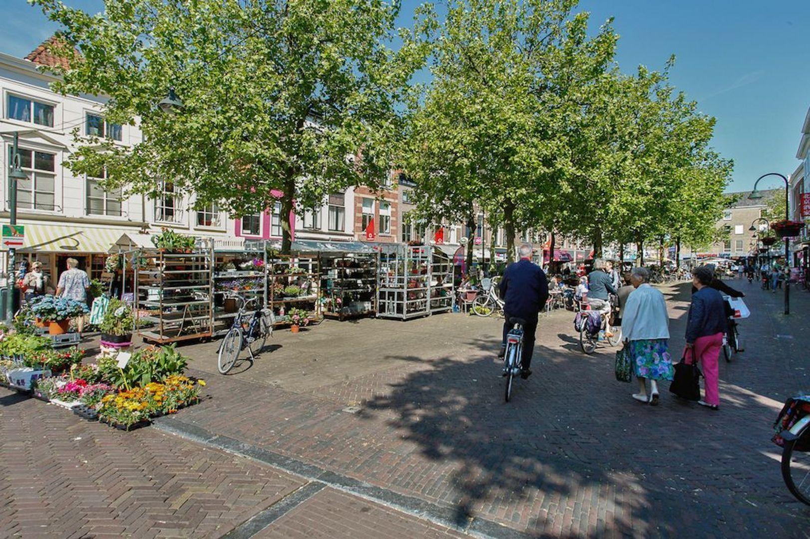 Molslaan 2 A., Delft foto-31