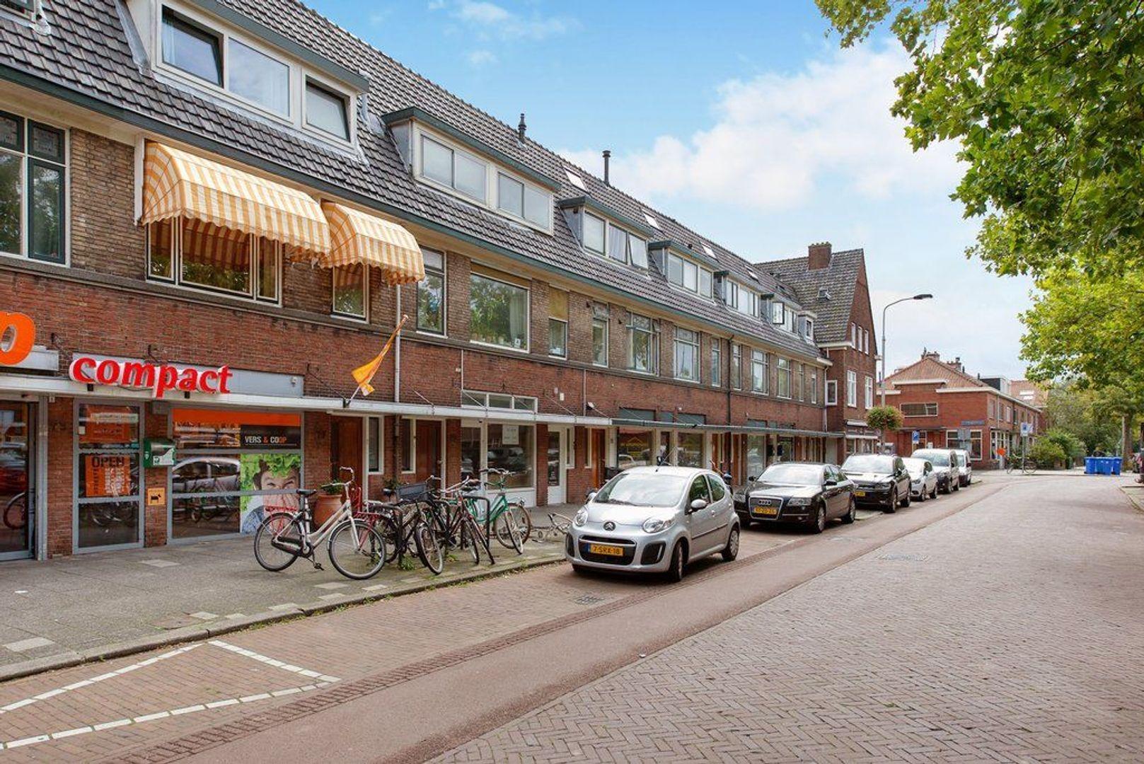 Hof van Delftlaan 77, Delft foto-0