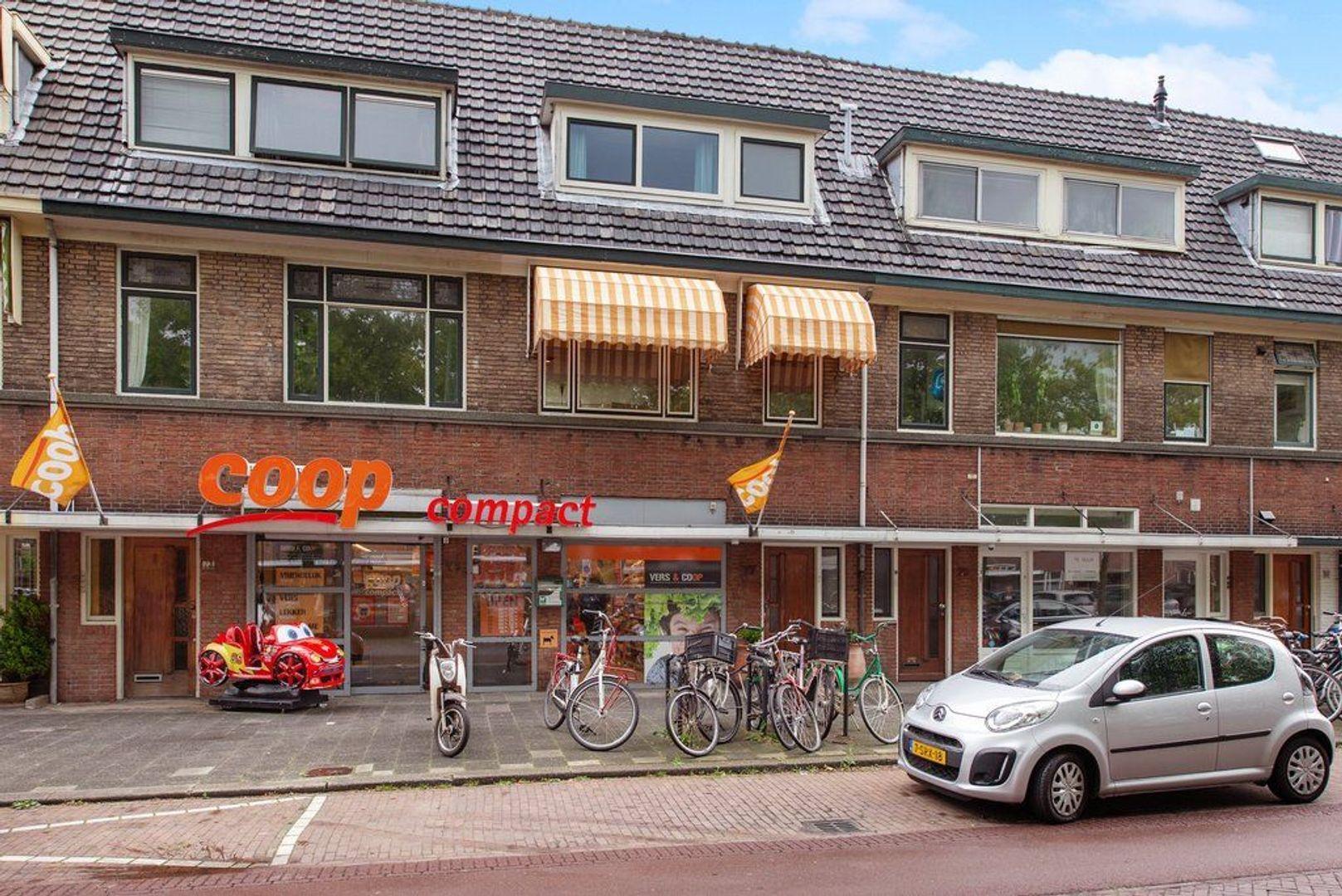 Hof van Delftlaan 77, Delft foto-1