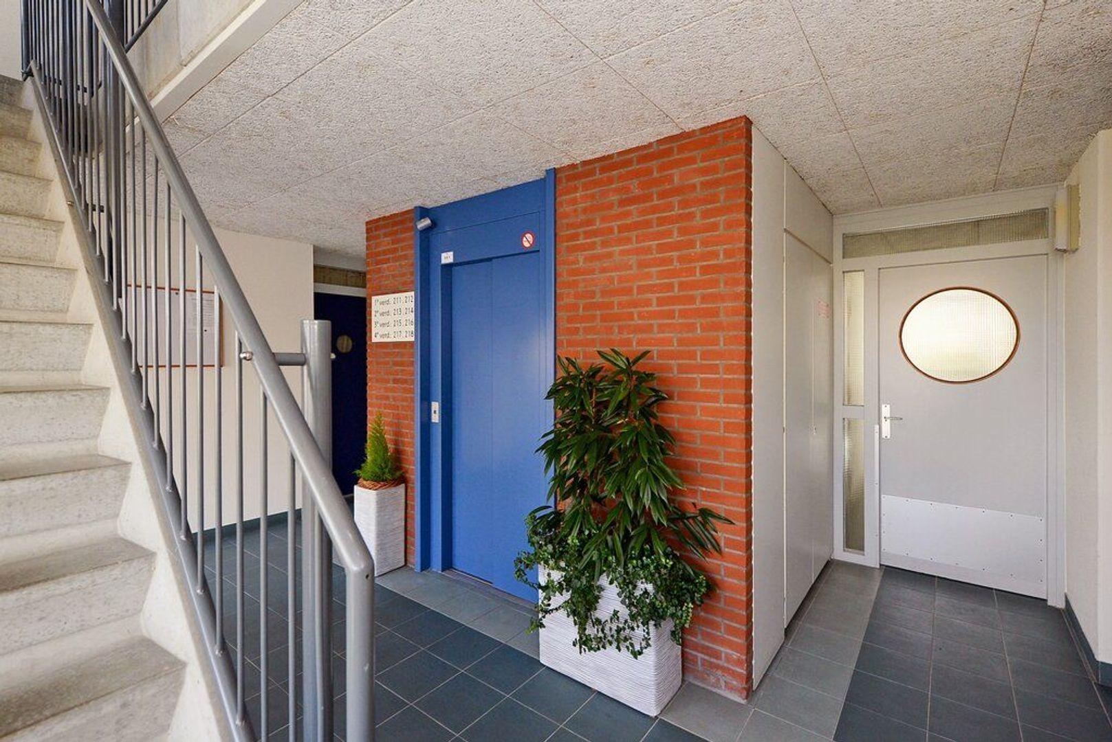 Zuideinde 215, Delft foto-13
