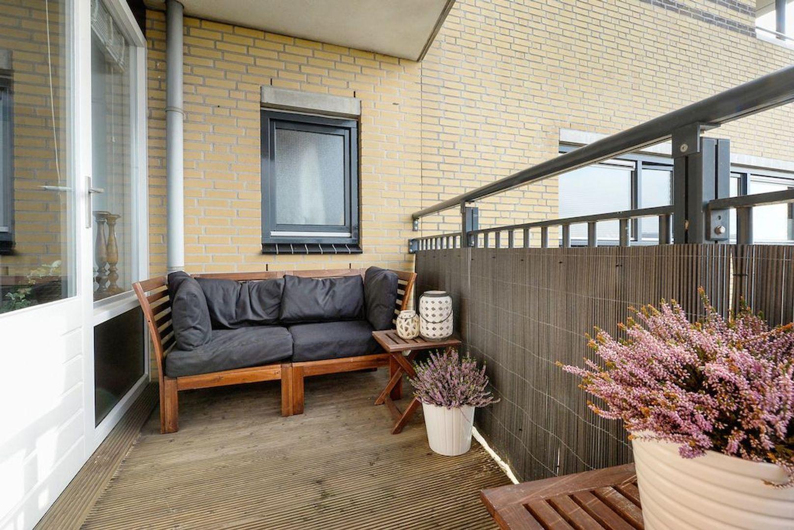 Zwanebloem 42, Den Hoorn foto-14