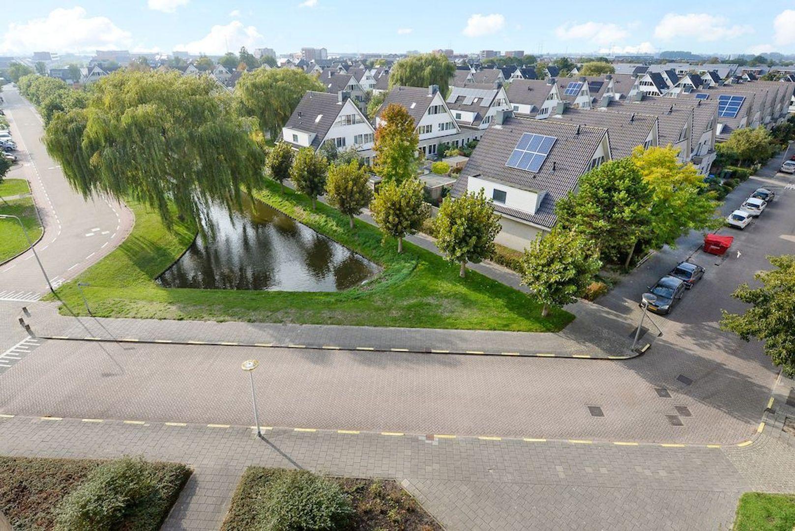 Zwanebloem 42, Den Hoorn foto-15
