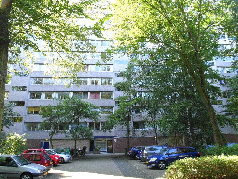 Aart van der Leeuwlaan 136, Delft foto-0