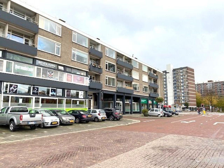 Papsouwselaan 113, Delft foto-0