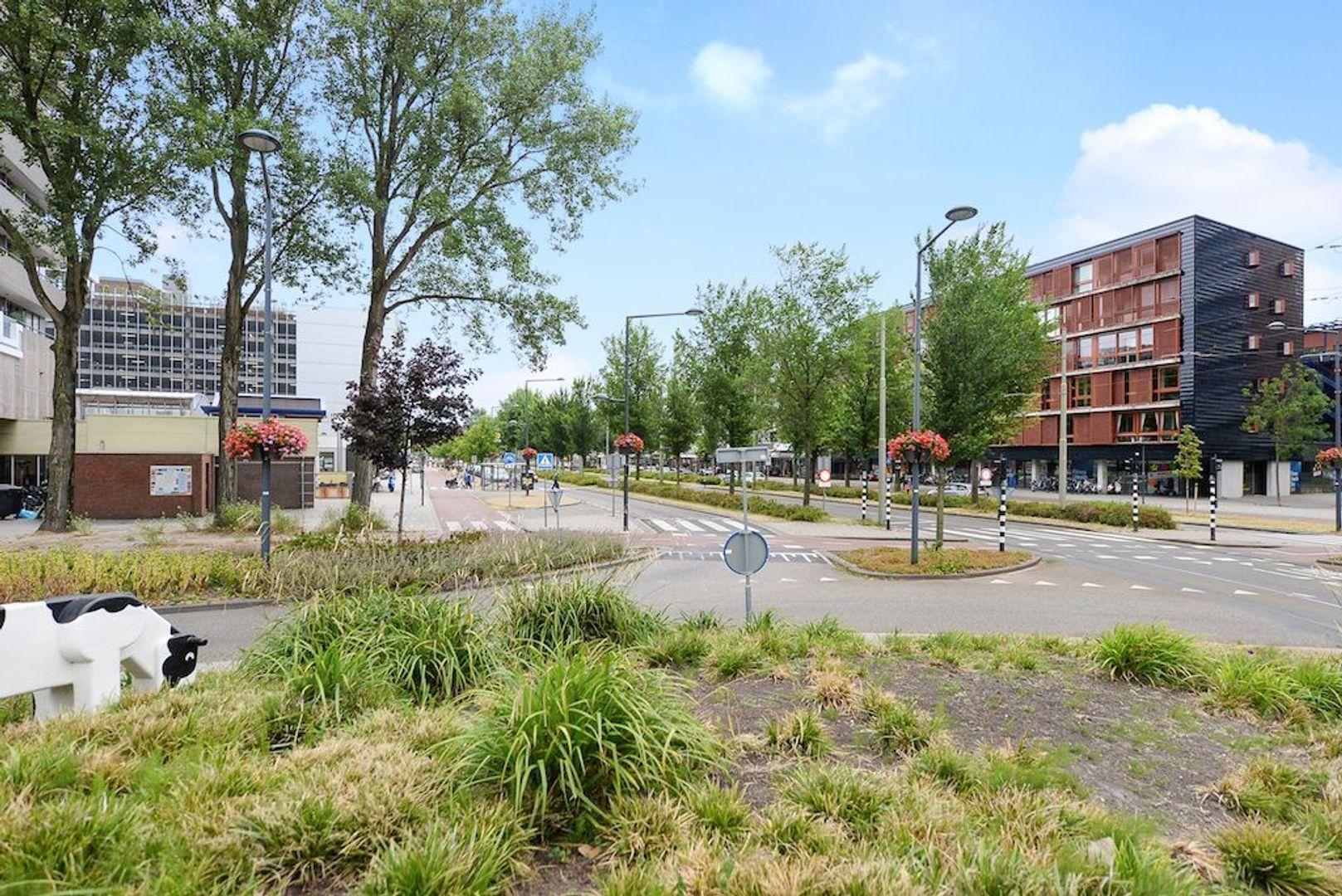 Icarusweg 103, Delft foto-34