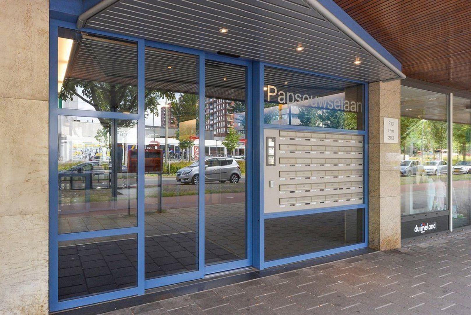 Papsouwselaan 255, Delft foto-1