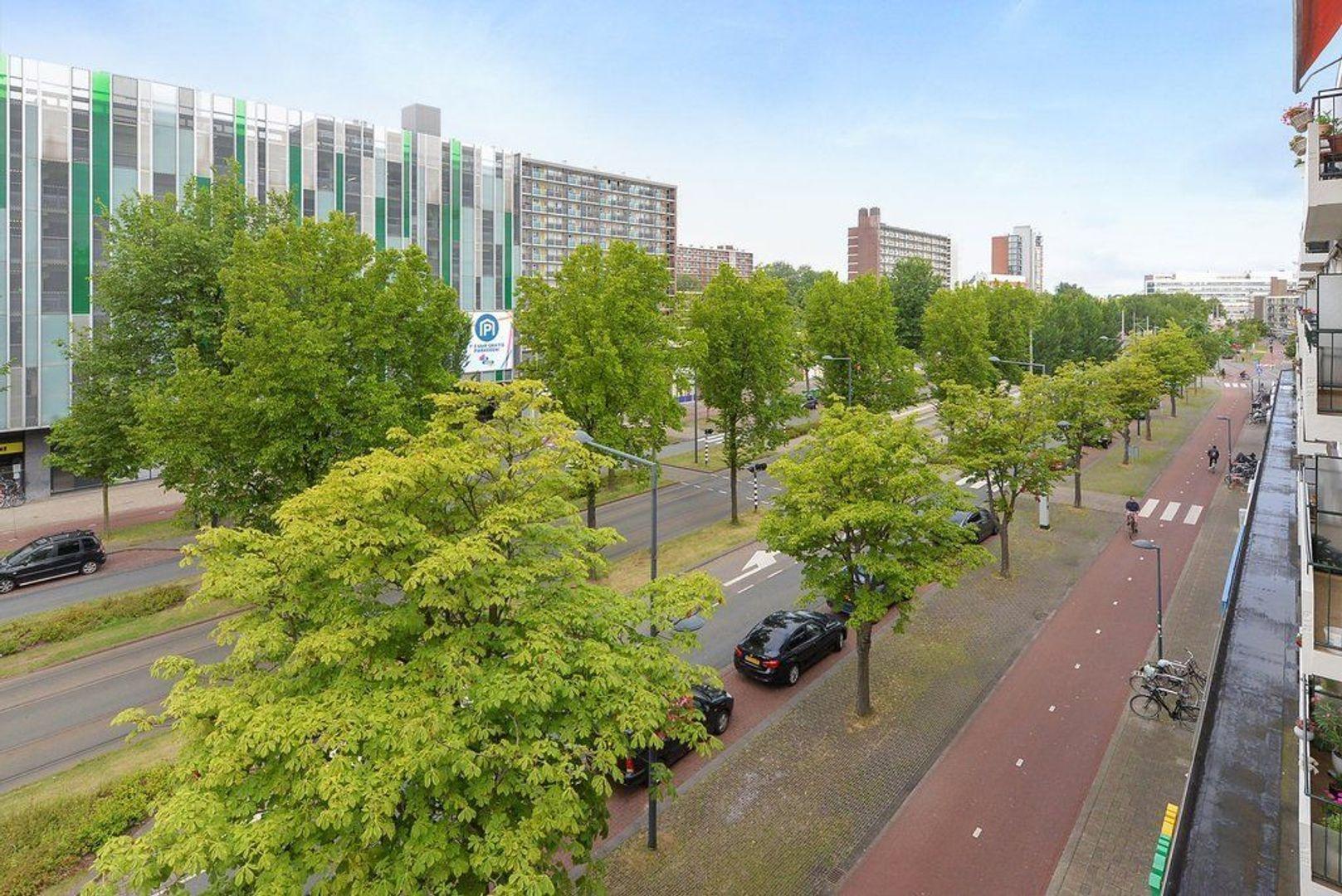 Papsouwselaan 255, Delft foto-21